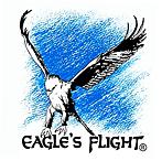 Eagle's Flight : 17 années d'expérience à l'avant-garde du Team Building